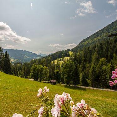 Aussicht, Hütte Höhenegg, St. Martin, Salzburg, Salzburg, Österreich