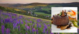 HOCHSCHWARZWALD-GENUSS - active vacation and conscious enjoyment