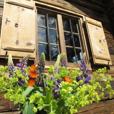 Fenster, Turracher Hütte in Ebene Reichenau - Turracher Höhe, Kärnten, Kärnten, Österreich