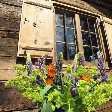 Window, Turracher Hütte, Ebene Reichenau - Turracher Höhe, Kärnten, Carinthia , Austria