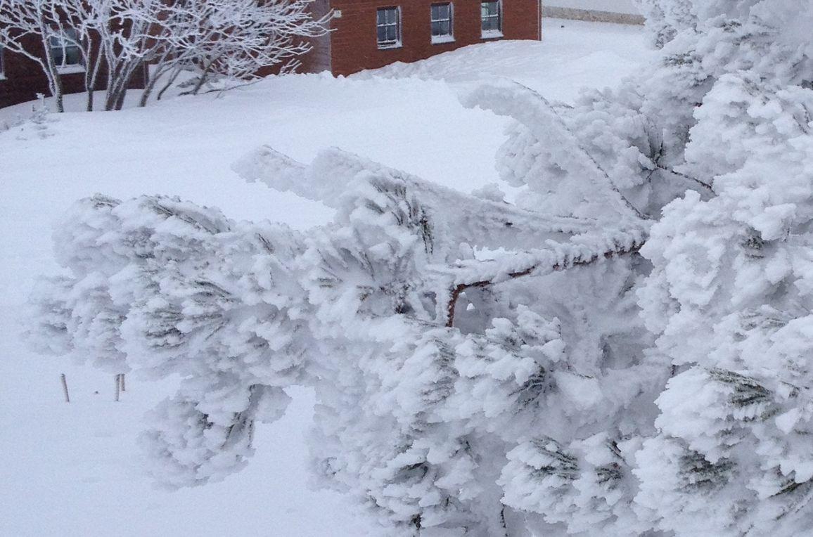Schönberghütte am Feuerkogel, Winter