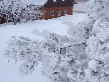 Schönberghütte am Feuerkogel - Upper Austria - Austria