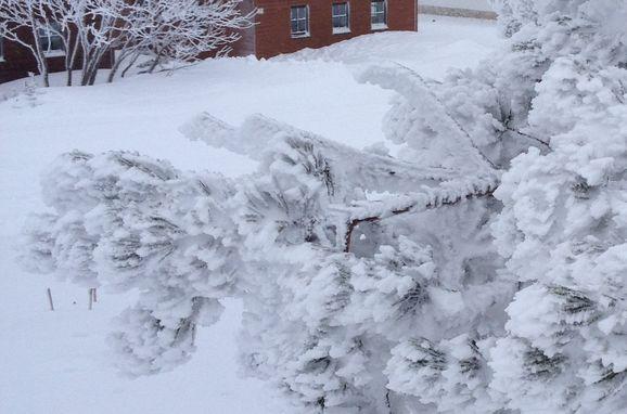 Winter, Schönberghütte am Feuerkogel in Ebensee, Oberösterreich, Upper Austria, Austria