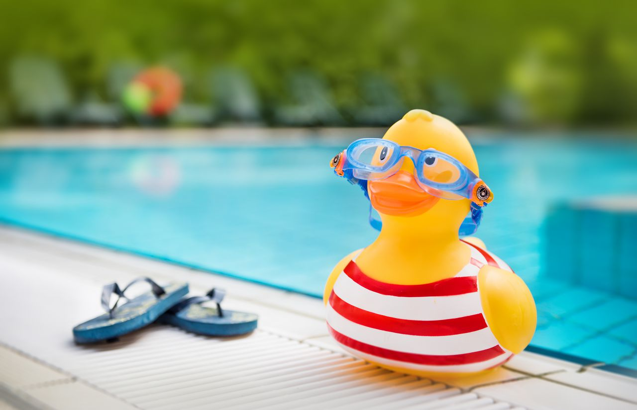 Schwimmbad Hotel Sonnenhügel Ente.jpg