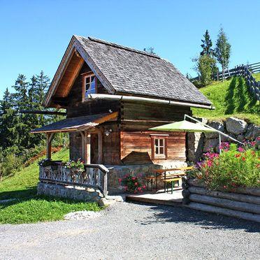 Summer, Oberprenner Troadkostn, Haus im Ennstal, Steiermark, Styria , Austria