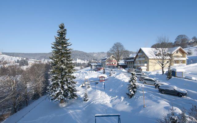 Winterbilder Dez.10 072.jpg