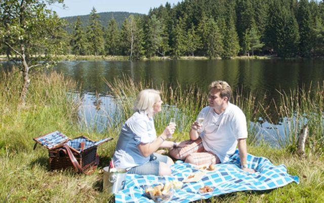 imp_krug_picknick.jpg