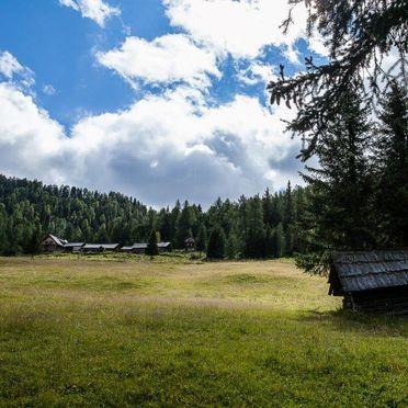 Fleissner Hütte, Aussicht