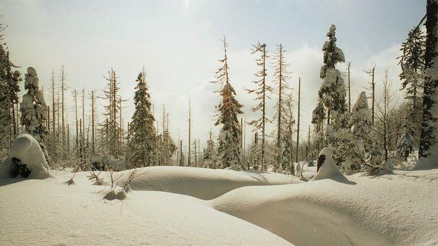 Winter Landzeit