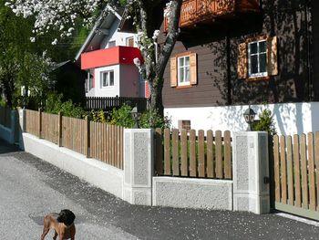 Ferienhaus Almenblick - Kärnten - Österreich