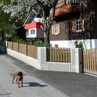 Sommer, Ferienhaus Almenblick, Lind im Drautal, Kärnten, Kärnten, Österreich