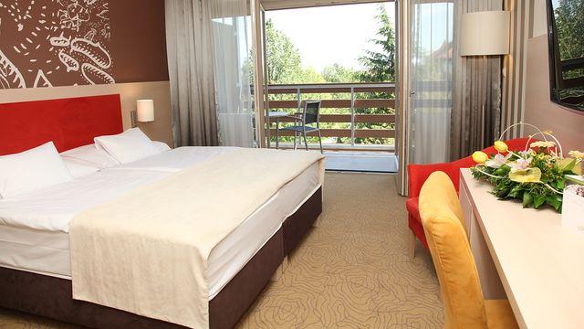 Doppelzimmer (Double room) | 24 qm - 1-Raum