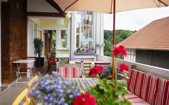 Biohotel Lindengut: Terrasse