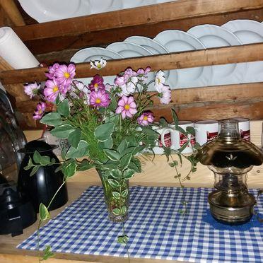 Küche, Unterkofler Almhütte in Osttirol - Außervillgraten , Tirol, Tirol, Österreich