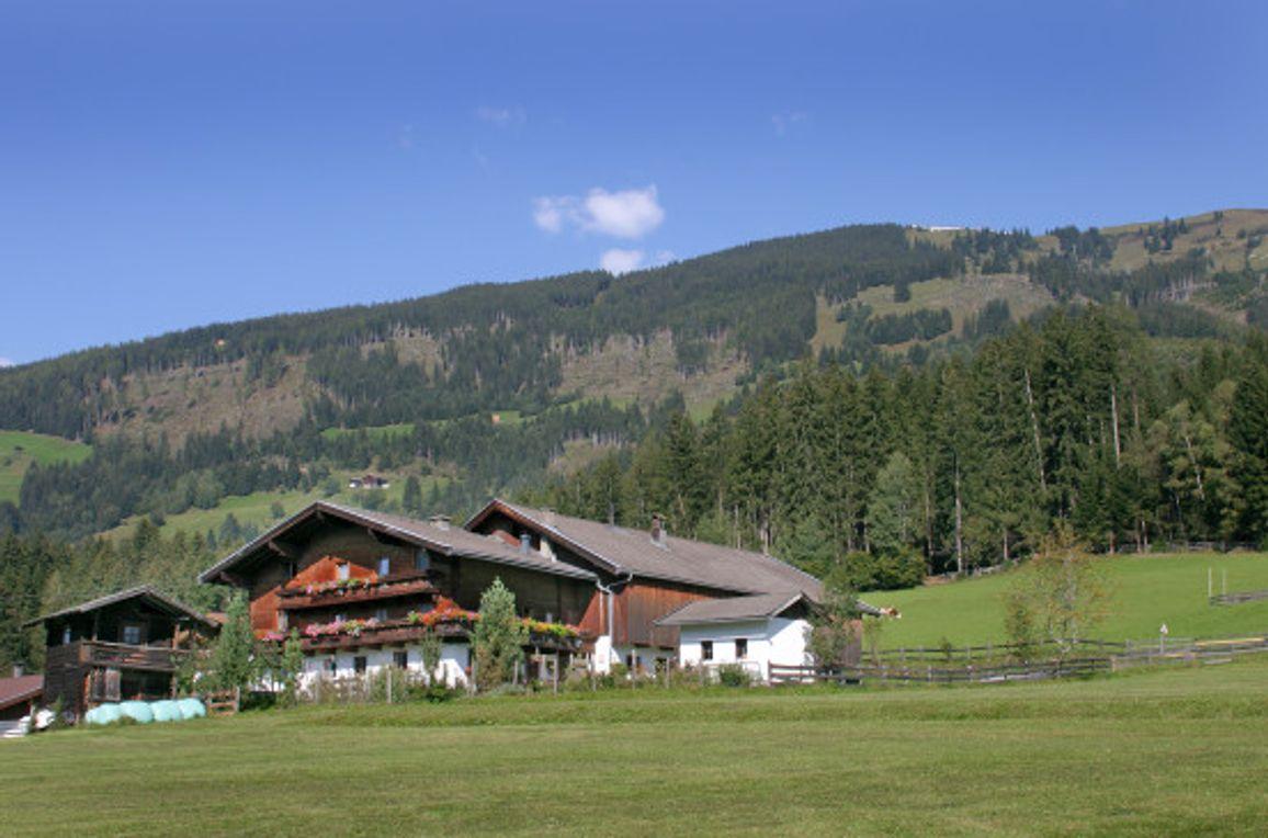 Bauernhaus Hollersbach , Sommer