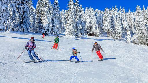 Nur 500 m von Ihrem Apartment entfernt finden Sie Skilifte und Übungshänge.