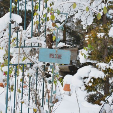 Sagmeister Hütte, Winter