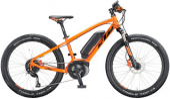 Kinder E-Mountainbike  / Leihdauer: 1 Tag