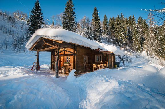 Winter, Meine kleine Alm, Mühlbach am Hochkönig, Salzburg, Salzburg, Österreich
