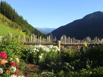 Schauinstal Appartement - Alto Adige - Italy
