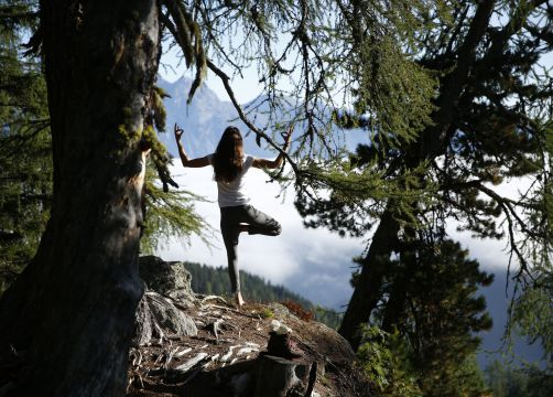 Biohotel Bergkristall Yoga im Wald - Bio- & Yogahotel Bergkristall