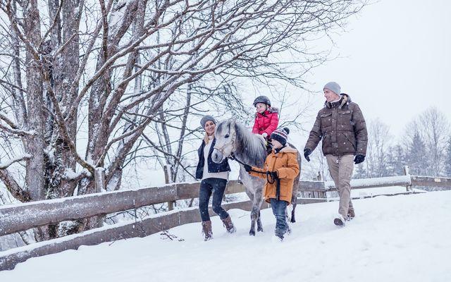 Ponyreiten im Winter