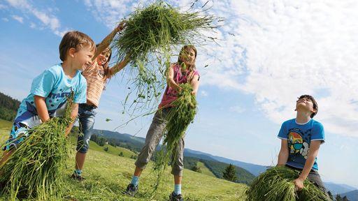 Verbringen Sie einen abwechslungsreichen Familienurlaub im Familotel Hochschwarzwald.