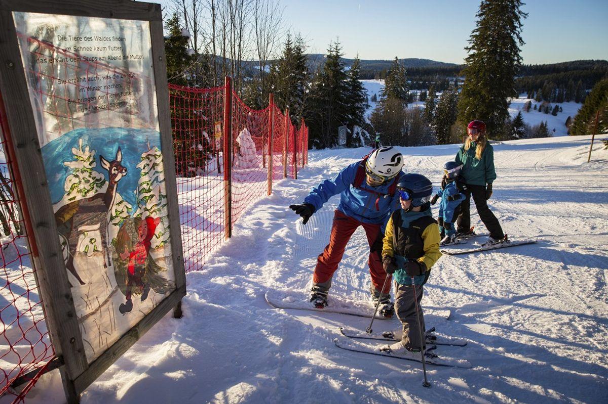 Ski-Asse und Schneehasen-Wochen ab 2 Übernachtungen (Kinder unter 7 J. gratis)