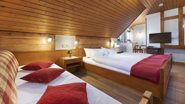 Doppelzimmer Buche Typ 1   ab 15 qm - 1 Raum