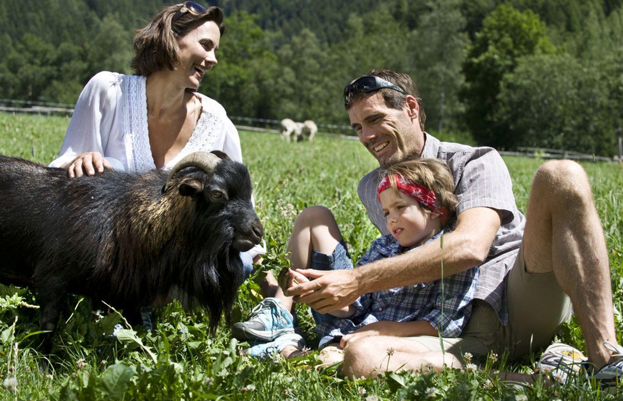 Streichelzoo - Familie mit Ziege