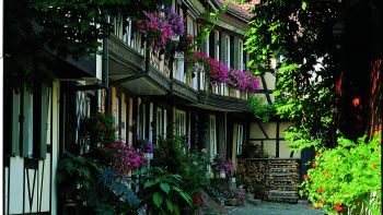 Historisches Gengenbach entdecken