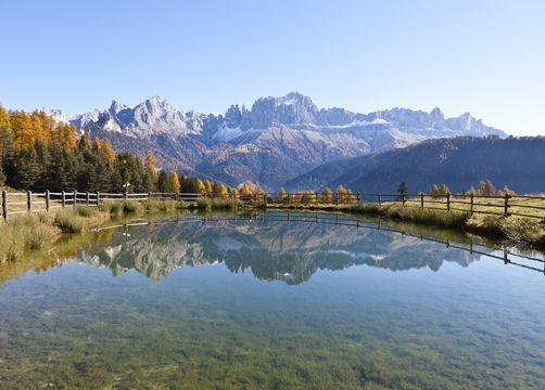 Bio- und Bikehotel Steineggerhof, Steinegg, Südtirol, Trentino-Alto Adige, Italia (13/39)