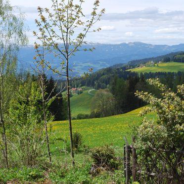 Aussicht, Langhans Hütte 1 in St. Gertraud - Lavanttal, Kärnten, Kärnten, Österreich