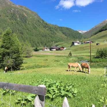Sommer, Bergkristall Hütte, St. Sigmund im Sellrain, Tirol, Tirol, Österreich