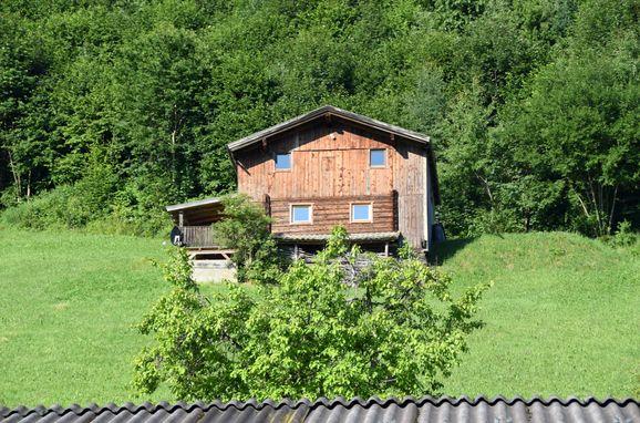 Sommer, WALDHÜTTE in Kaltenbach im Zillertal, Tirol, Tirol, Österreich
