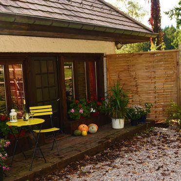 Sommer, Kiefer Hütte , La Rosiere - Vogesen, Vogesen, Elsass, Frankreich