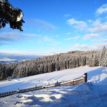 Winter, Almhaus Herzstück, Preitenegg, Lavanttal, Kärnten, Österreich