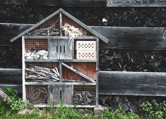 Nachhaltigkeit - Bruggerhof – Camping, Restaurant, Hotel