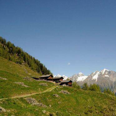 Sommer, Arnitzalm in Matrei/Osttirol, Tirol, Tirol, Österreich