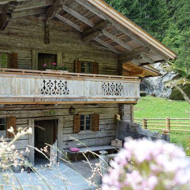 Sommer, Lacknerbrunn ASTL-Alm, Mayrhofen, Tirol, Tirol, Österreich
