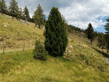 Amberger Hütte - Kärnten - Österreich