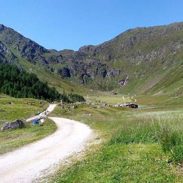 Sommer - Zufahrt Forststraße, Oberpranterhütte, Meransen, Trentino-Südtirol, Italien