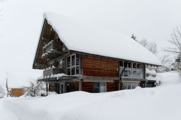 Outside Winter 23 - Main Image, Chalet Christine in Oberbayern, Siegsdorf, Oberbayern, Bavaria, Germany