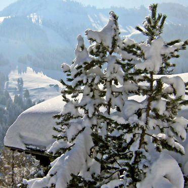 Außen Winter 17, Chalet Le Chamois, Moléson-sur-Gruyères, Freiburg, Freiburg, Schweiz