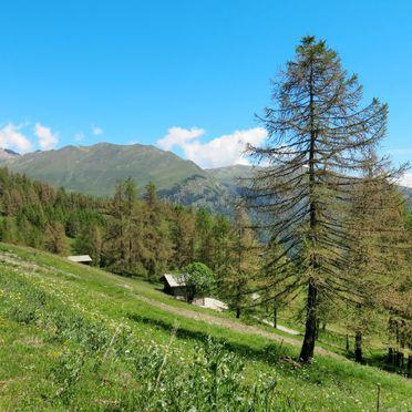 Innen Sommer 4, Rustico Pra Viei, Sampeyre, Piemonte-Langhe & Monferrato, Piemont, Italien