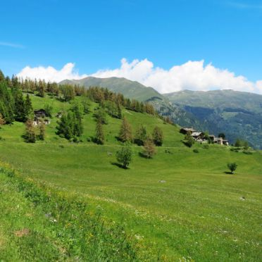 Innen Sommer 2, Casa pra la Funt, Sampeyre, Piemonte-Langhe & Monferrato, Piemont, Italien