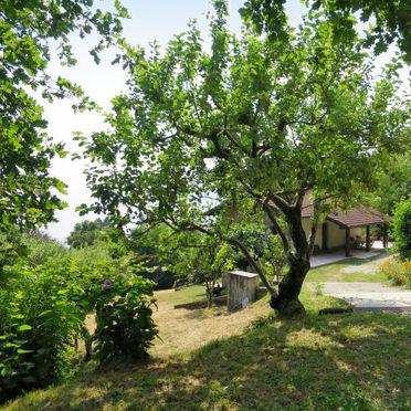 Innen Sommer 3, Rustico Fiorella, Luino, Lago Maggiore, Lombardei, Italien