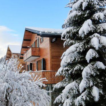 Außen Winter 14, Chalet fer à Cheval, Châtel, Savoyen - Hochsavoyen, Auvergne-Rhône-Alpes, Frankreich