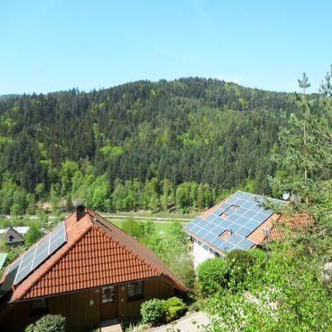Innen Sommer 2, Schwarzwaldhütte Julia, Hornberg, Schwarzwald, Baden-Württemberg, Deutschland