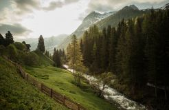 Bühelwirt, St. Jakob im Ahrntal, Trentino-Alto Adige, Italia (9/26)